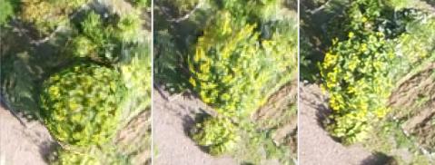 Skärmklipp från 2018-09-14 17:49:12.png